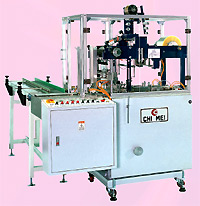Overwrapping Machine With Feeding Conveyor